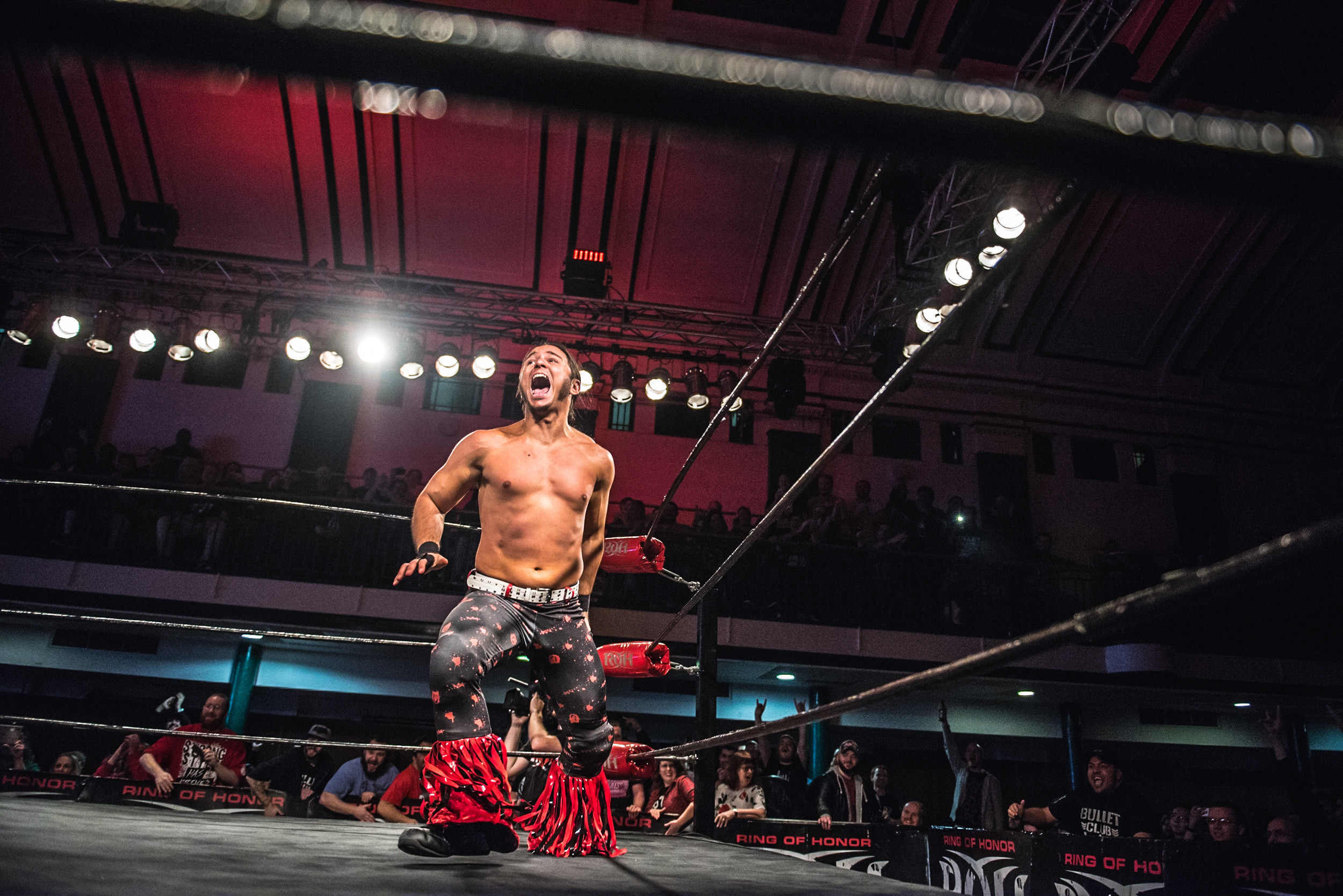 party next door how the young bucks revolutionised professional