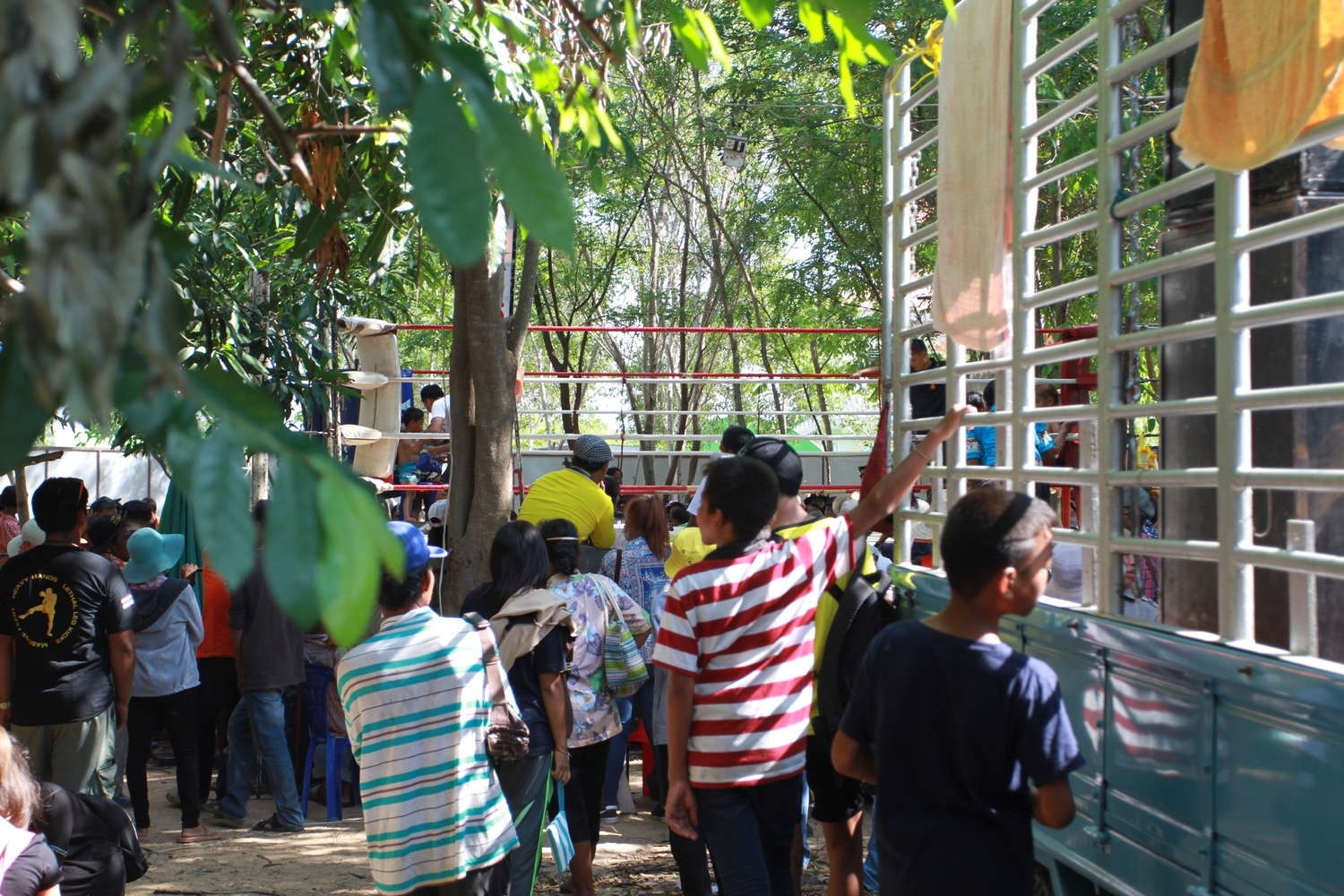 community news, Learning to Walk and Learning to Fight: The Muay Thai Fights of Songkran