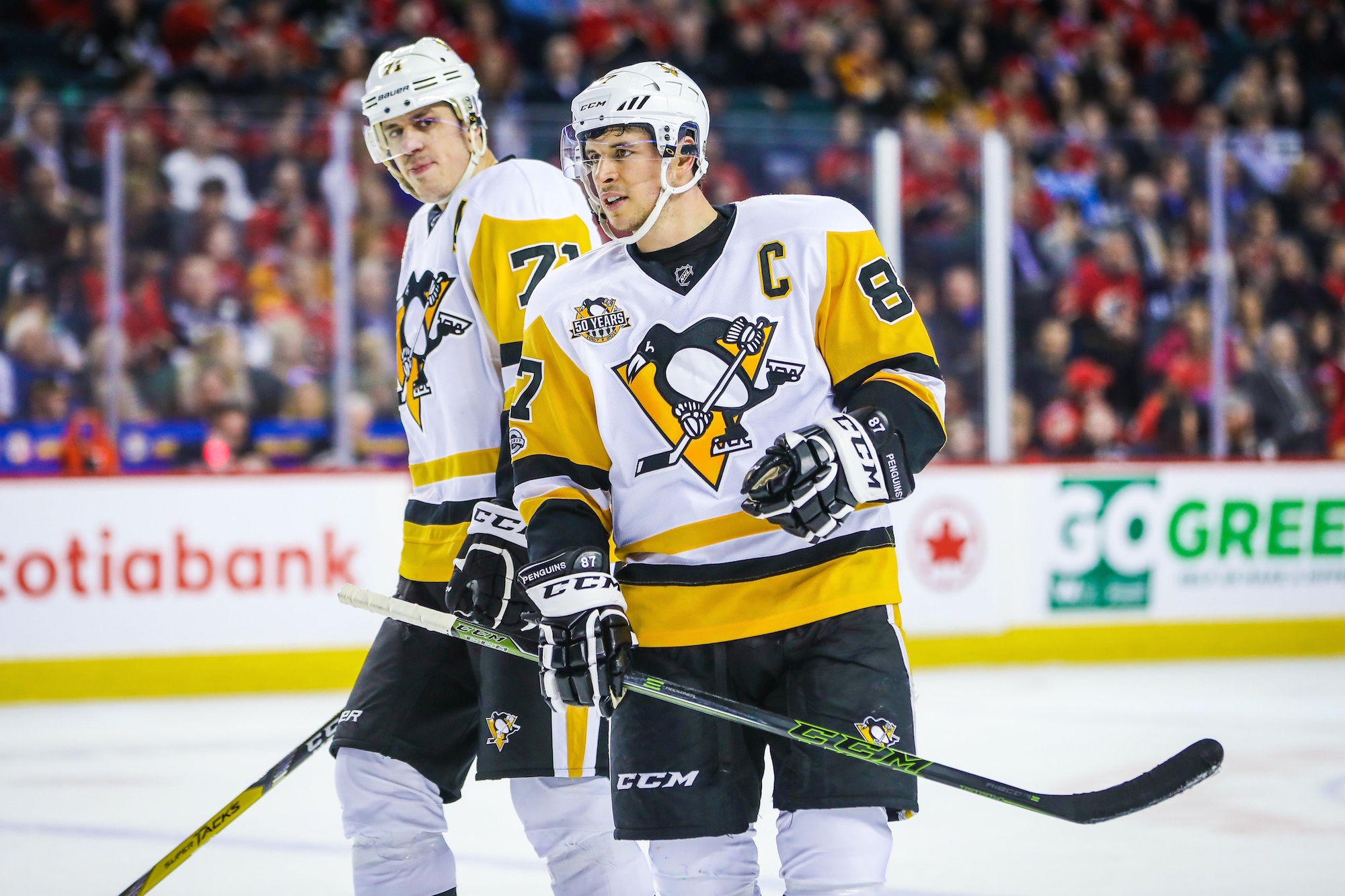 Image result for Crosby Malkin 2017