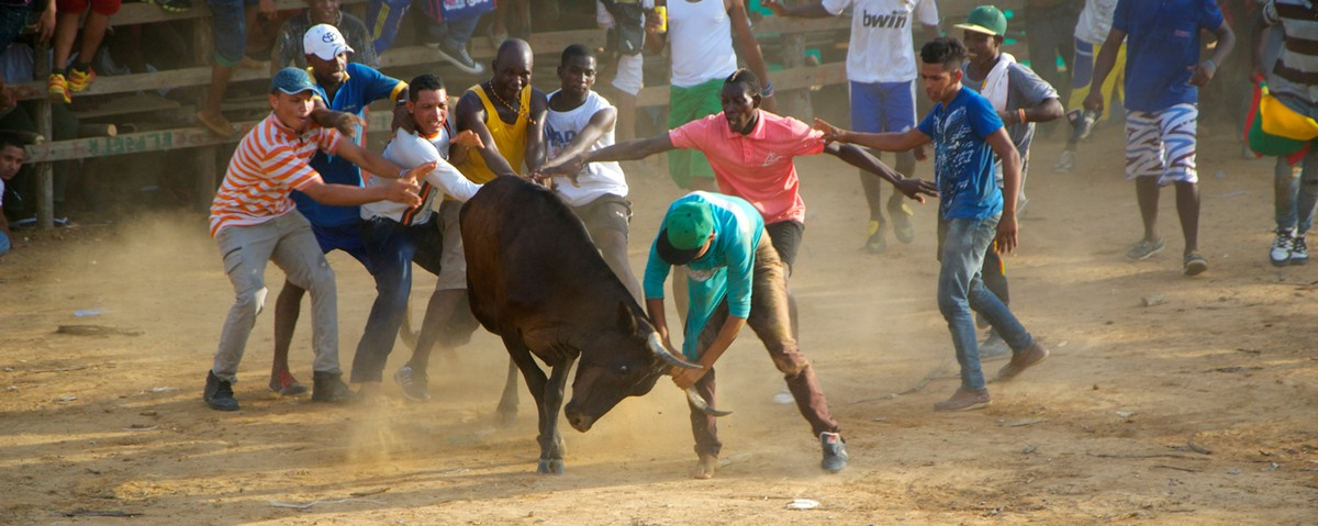 The Craziest Colombian Bullfighting Story Ever