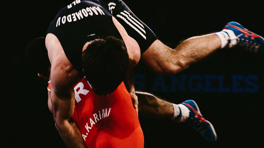 The Beautiful, Badass World Freestyle Wrestling Championship