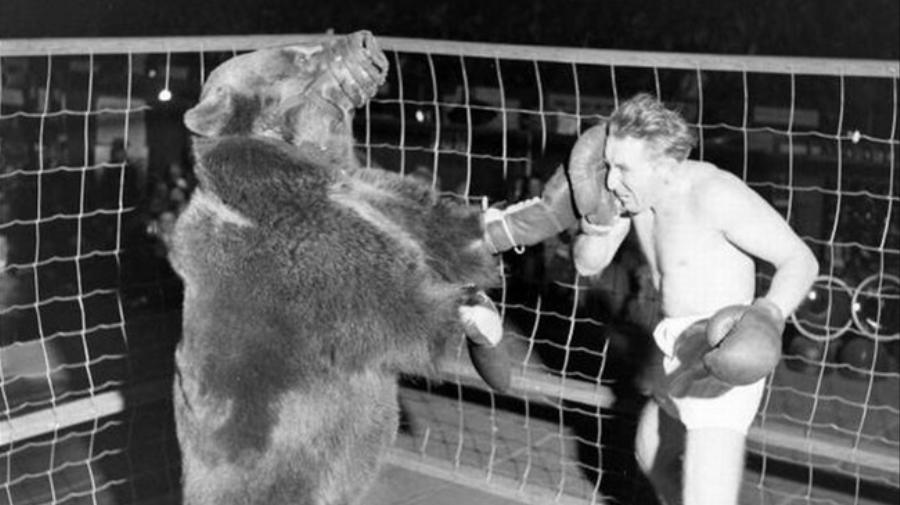 The Twisted and Terrible History of Men Fighting Bears