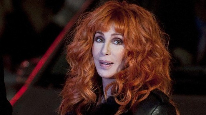 I've Got You, Nick Diaz: Cher Shows Support for Banned MMA Fighter