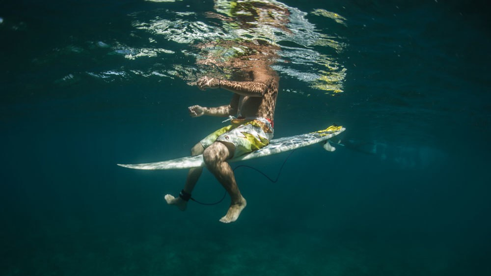 """Beyond Surfing's """"Bro-Science"""": Looking for Answers to Hawaii's Shark Attack Spike"""