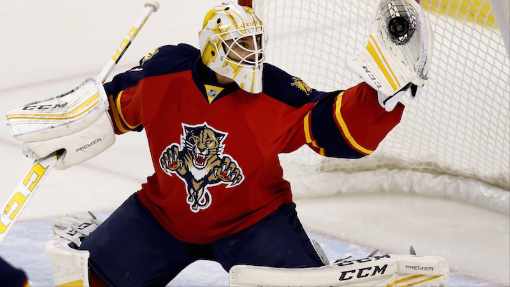 The Panthers Are Relying Too Much On Roberto Luongo Vice