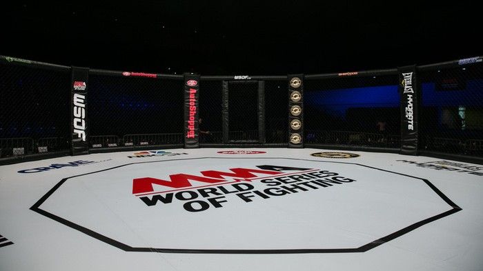 2017 is Looking Grim for World Series of Fighting