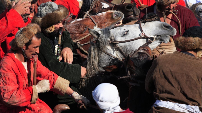 L'histoire du premier cavalier afghan venu de France
