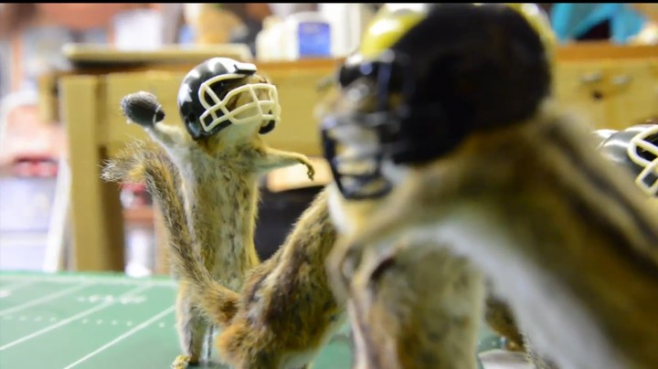 One Man's Heroic Quest to Recreate Storied Rivalry Using Dead Chipmunks