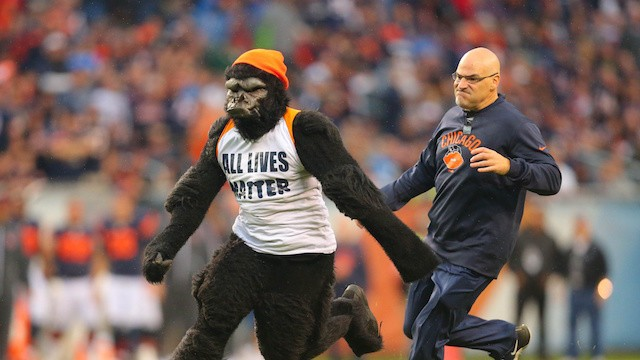 "Man Runs Out Onto Field Wearing Gorilla Suit and an ""All Lives Matter"" Shirt During Bears vs. Lions"
