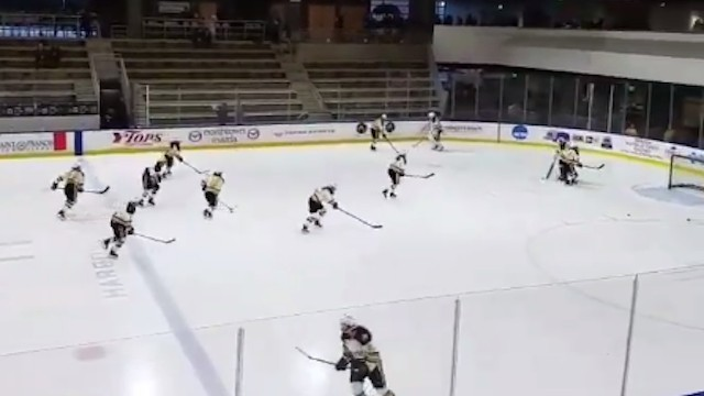'Bitch Better Have My Money' Plays During Warmup of NWHL Game After Announcement of Salary Cuts