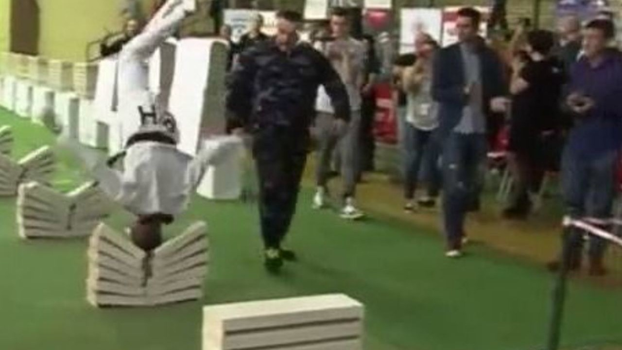 Bosnian Teenager Breaks 111 Concrete Slabs With His Head, Is Certifiably Hardcore