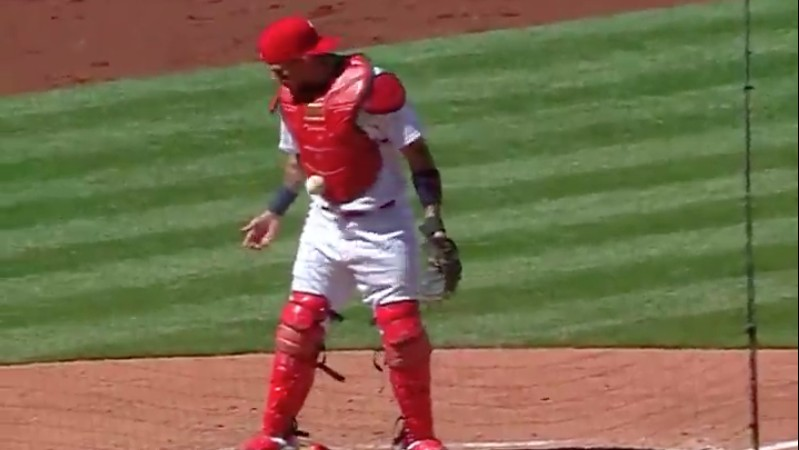 Serious Question: How Does a Baseball Get Stuck to a Chest Protector?