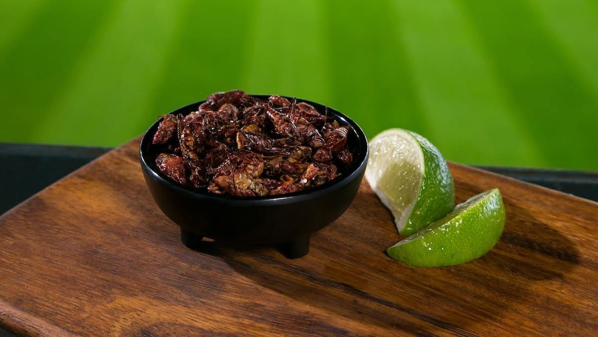 The Mariners are Selling Too Many Toasted Grasshoppers